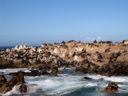 Fach-Studienreise Südafrika mit Studiosus